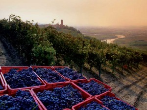 Piemonte i Italia. Foto: UNESCO
